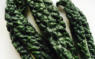 Current Obsession: Cavolo Nero
