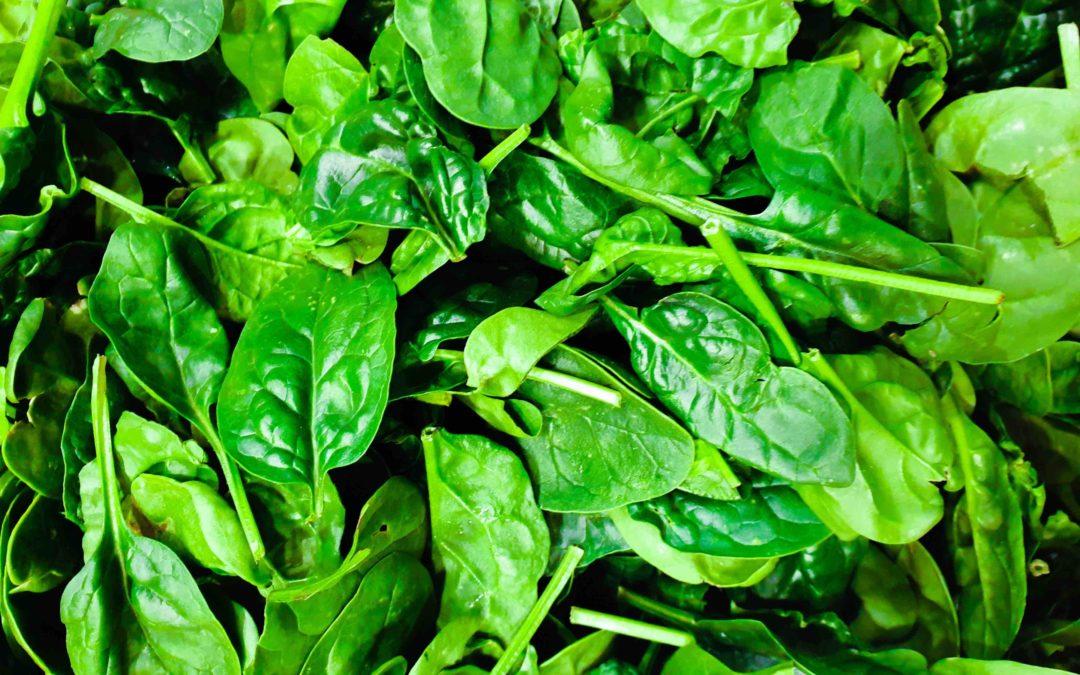 Acide folique/vitamine B9, méthylation et conception : ce qu'il faut savoir